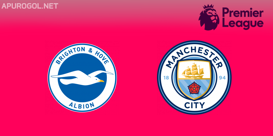 Brighton vs Manchester City en VIVO ONLINE - Premier League 2018-2019 en DIRECTO Fecha 38